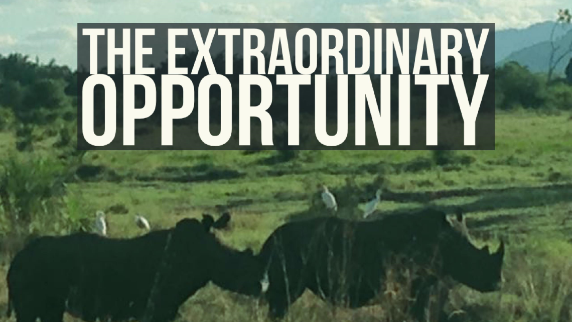 Series: <span>The Extraordinary Opportunity</span>